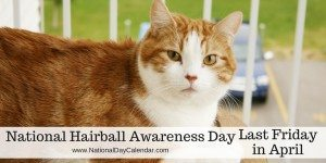 National Hairball Awareness Day - Last Friday in April
