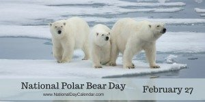 National Polar Bear Day - February 27